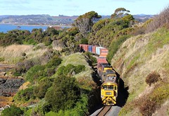Trains In Tasmania - 2054 is seen Winding around a rugged Coastline (Trains In Tasmania) Tags: train gm australia tasmania bronco 136 freighttrain emd intermodal goodstrain tasrail containertrain northwesttasmania canoneos550d trainsintasmania stevebromley 2050class