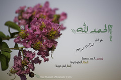 "Praise the Lord |  (Noor Al-janabi ""N.J"") Tags: god lord  praisethelord        salawat"