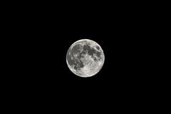 Sturgeon Moon (Matt Molloy) Tags: light moon lines rock night dark photography space awesome details august full sphere universe creators lovelife sturgeonmoon mattmolloy grainmoon