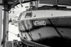 c'mon sea legs. (aetelischak) Tags: sanfrancisco california blackandwhite bw pier boat dock sfo hydestreetpier hydestpier