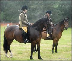 Cranleigh show 5 (Nodule1) Tags: horses rain ponies equestrian riders cranlieghshow