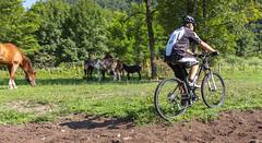 iBike S03+ Trekking Bottle Holder (ibike2012) Tags: s03 sunstar ibike trekkingbottleholder
