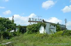 Long Abandoned Diner (Peachhead (4,000,000 views!)) Tags: abandoned newjersey stainlesssteel ruin nj diner forgotten rusted weathered crusty crumbling trashed wornout fallingdown deteriorating centraljersey us22 readingtontownship johnnysdiner whitehousediner whitehousenj