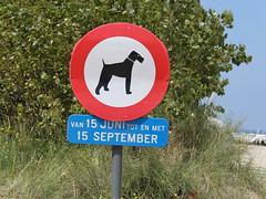 No dogs allowed at Nieuwpoort beach from 15 June until 15 September :) (Kristel Van Loock) Tags: belgium belgique belgi westvlaanderen belgica bord flanders nieuwpoort belgien belgio vlaanderen belgiancoast belgischekust ctebelge fiandre hondenverboden verbodsbordhond