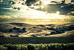 The Valley (R23W) Tags: ca sunset solvang hdr fujixpro1 harrisonclarkewinery