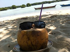 Cool Coconut