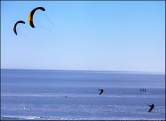 Tandem Kites (Ed.Stockard) Tags: snow kite ski ice glacier arctic greenland summit parhelion ozone arcs halos circumzenithalarc optics sundogs parheliccircle summitstation 22degreehalo kiteski icesheet ozonekites