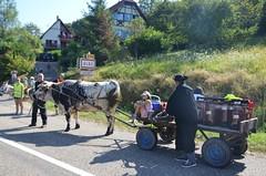 Transport bière Albé 2016