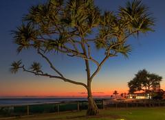 Rainbow Bay (rod marshall) Tags: sunrise snapperrocks bestsunrise sunrisesnapperrocksbestsunrise dawn oceandawn