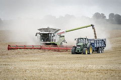 Harvest Time (Jez22) Tags: harvest combine harvester tractor barley crop cereal field dust agriculture summer trailer farming agicultural machinery copyright jeremysage claas lexion johndeere colour harvesting grain 780 marston