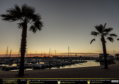 Static Trees Sundown (andrewtijou) Tags: andrewtijou nikond7200 europe spain puntadelmoral costadelaluz port sunset harbour water boats palmtrees es