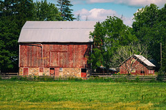 Red Barn (A Great Capture) Tags: colorful cheerful farm farmscape eos digital agreatcapture agc wwwagreatcapturecom adjm toronto on ontario canada canadian photographer northamerica ash2276 ashleylduffus ald mobilejay jamesmitchell summer summertime 2016 country countryside countrylife agriculture farming farmliving outdoors green red barn house fence wood tree trees outside colours natural cloud serene grange grass old regionalmunicipalityofyork yorkregion