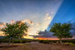 Crepuscular Rays (inlightful) Tags: sunset sun sunny sunrays sunbeams shadows rays crepuscularrays sunrise morning clouds sky trees desert dirt southwest newmexico socorrocounty nature rural bluesky blue