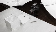 Making of 'Wasp' (Explored) (stavos) Tags: makingof making setup wasp macro strobist bts behind scenes canon 7dmarkii yongnuo speedlight umbrella stavosnl