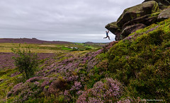 Self Portrait (C Noakes) Tags: moor purple strong athlete outdoors natural foliage heather pop colour nikon climbing d700 d7000 newstones rock bouldering climb landscape staffordshire tokina 1224mm action extreme self portrait