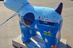 Skipper-J-17-September-2016 (Steve Ellwood Whitley Bay) Tags: greatnorthsnowdogs guidedog mikeclay northshields cliffordsfort ellwood steveellwood skipper joannewishart dfds westernquay fishquay