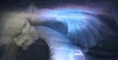Fantasy on ice (Sara Stampa) Tags: favola drago fantasia fantasy fable dream sogno dragon svizzera swiss ice ghiaccio ghiacciaio glacier