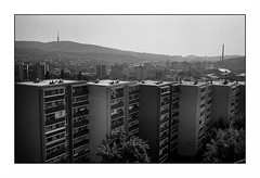 Bratislava (Punkrocker*) Tags: leica m7 summicron c 40mm 402 film kodak trix 400 nb bwfp street city people bratislava slovaquie travel