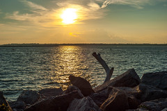 Sunset on the Rocks (Michael Daum) Tags: d700 nikon nikkor 50mmf18af buffalo waterfront