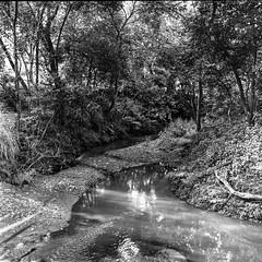 River Walk (Tim L Lowe) Tags: barriociudadjardin cali carlzeissplanar2880cb colombia fujifilmneopan100acros hasselblad500cm kodakxtol13n1 riomelendez ciudadjardin