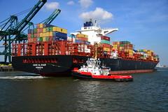 UASC Al Khor DST_4723 (larry_antwerp) Tags: technomar uascalkhor uasc 9710220 tug sleepboot      antwerp antwerpen       port        belgium belgi          schip ship vessel        schelde