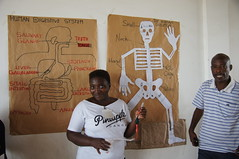 2-d representations of skeleton