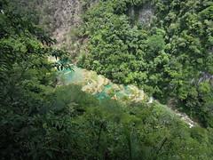 DSCN7974 (Matt Knott) Tags: semuc champey lanquin guatemala central america pools fresh water river forest jungle swimming sun summer