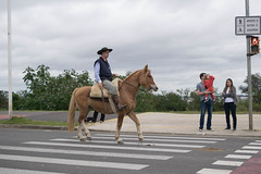 DSC_5461 (neyde zys) Tags: bandadabrigada brigadamilitar desfilefarroupilha gauchos indumentaria prendas tradicao