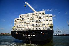 Carolina Star DST_4834 (larry_antwerp) Tags: 9210062 carolinastar metrostarmanagement metrostar container reefer hamburgsud antwerp antwerpen       port        belgium belgi          schip ship vessel