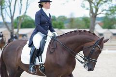 Appleton Gemma GBR (Arnault Leraitre) Tags: horse cheval pole cavalier normandie rider calvados deauville cdi detente dressage equitation hippique internationnal