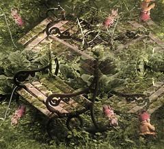 Garden Gnome`s Paradise (hedbavny) Tags: old apple vintage bench moss paradise alt empty digitalart wiese bank manipulation gras allotment holz mossy apfel moos gardengnome gartenzwerg kleingarten wasserhahn paradies wasserleitung bearbeitung hernals dornbach wasserrohr bemoost gartenschlauch neuwaldegg zipfelmtze gardengoblin moosig schwarzenbergallee moosbedeckt