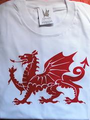 Remera dragón Gales (Lady Krizia) Tags: dragon tshirt gales celtic vinilo celta remera wilwarin remeras estampado termoestampado