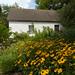 Gascoigne Bluff Slave Cabins 3