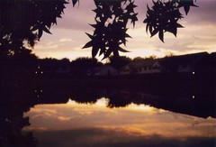 Yesterday's a Dream (71/100) (SkySNAPS Photography) Tags: sunset summer sky reflection film leaves silhouette clouds pond nikon michigan annarbor 2010 sentimental songlyrics greatesthits n75 iphotooriginal 100photos mybestwork sooc