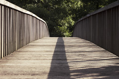 Brcke 1 (Benny_Joseph) Tags: bridge light shadow brown green contrast forest grey wooden eifel pont brcke planks heimbach rurtal