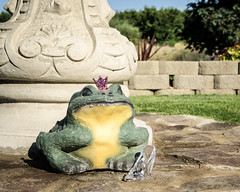 Frog Prince and the glass slipper (Greg Berdan) Tags: glass stone shoe prince frog crown slipper