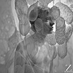 Oppress (ZukePhoto) Tags: lighting portrait bw art project square design personal body doubleexposure science micro series inside vein masked juxtaposition tones biology bacteria range edit overlap germs microorganisms developing