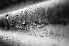 It's A Dry Heat (belleshaw) Tags: blackandwhite metal rust hole bokeh decay boxcar peelingpaint crusty 35mmf2 oerm orangeempirerailwaymuseum perrisca
