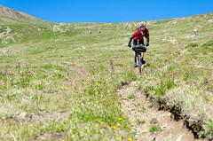 Chilcotins Round Two (Sam Skalsvik) Tags: alpine mountainbiking bigcreek singletrack chilcotins tyaughton tyaughtoncreek elbowpass alpinebiking chilcotinsmountainbiking chilcotinshiking