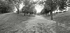 Louisville Landform Space (ken mccown) Tags: kentucky louisville landscapearchitecture landscapedesign louisvillewaterfrontpark hagreavesassociates