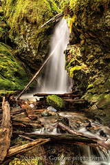 Hidden Waterfall (chasingthelight10) Tags: travel trees mountains nature photography landscapes events places mountrainiernationalpark vistas washingtonstate canyons forests creeks wildernesstrails westsideroad tahomacreek