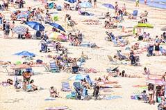 DayAtTheBeach (wesbs) Tags: ocean people men beach walking sand women sitting chairs sunny umbrellas tanning beachchairs suntanning lyingdown hss coolers sliderssunday