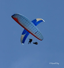 Paragliders ~Sam Crater & RK Flying on Friday the 13th~ (Ron1535) Tags: golden colorado wing sail roll pitch soaring friday glider 13th lookoutmountain thermal paragliders mtzion yaw freeflight freeflyers flexiblewing glideraircraft soaringaircraft ramairdesign paragliderpilots workingathermal