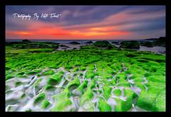 Newcastle South (Kiall Frost) Tags: ocean red color green beach water clouds sunrise newcastle nikon rocks surf australia nsw ripples leefilters d7000 kiallfrost