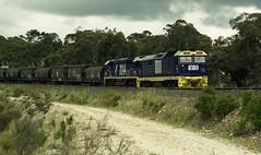 8180 8244 Bundanoon NSW (G train 79) Tags: 81 8180 8244