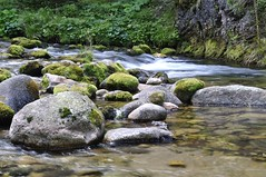 Riverflow (RTA Photography) Tags: water river rocks poland valley flowing tatras chocholowska