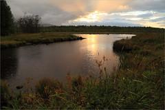(Kirill & K) Tags: sunset summer lake nature rain landscape russia        southural  zhurboloto