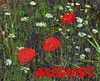 August AMG Bookmark:poppies and daisies (virtually_supine) Tags: bookmark icon wildflowers meadow daisies poppies composite vividcolour photomanipulation artisticmanipulationgroup photoshopelements9 seacourtnaturereserve botley oxford