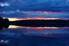 Two wild ducks in the evening (sakarip) Tags: ducks sakarip wildducks lake evening water reflection sky clouds sunset scenery landscape lakescape skyscape cloudscape finland luumki kokonkyl pahainlahti july summer birds