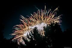 Fireworks (@Dpalichorov) Tags: outdoor fireworks light lights smoke fog tree nikond3200 nikon d3200 mist big illumination reveille shot bang nature sky night dark nightsky darksky skylights ngc